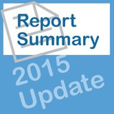 summary report term